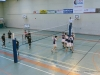 20150118-cpb-volley-rennes-coupe-de-france-018