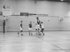 20150118-cpb-volley-rennes-coupe-de-france-071