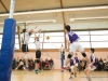20150215-CPB-Volley-Coupe-de-France-MM15-012